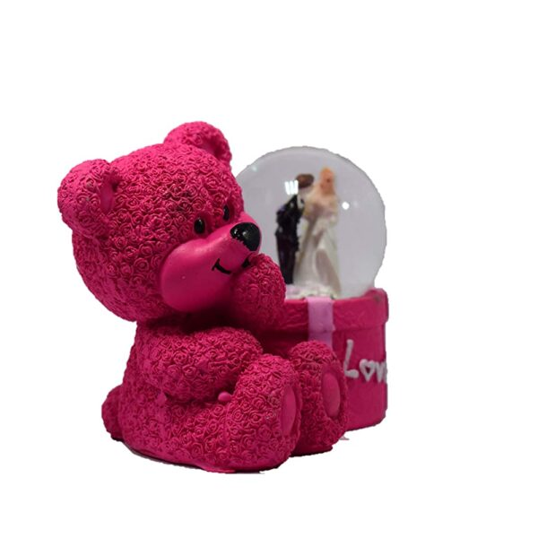 Hot Pink Teddy Bear with Lighting Couple