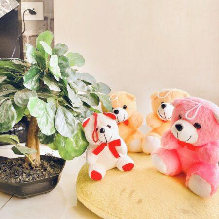 teddy bear combo